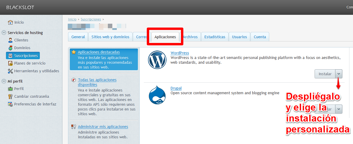 instalar wordpress en plesk-I
