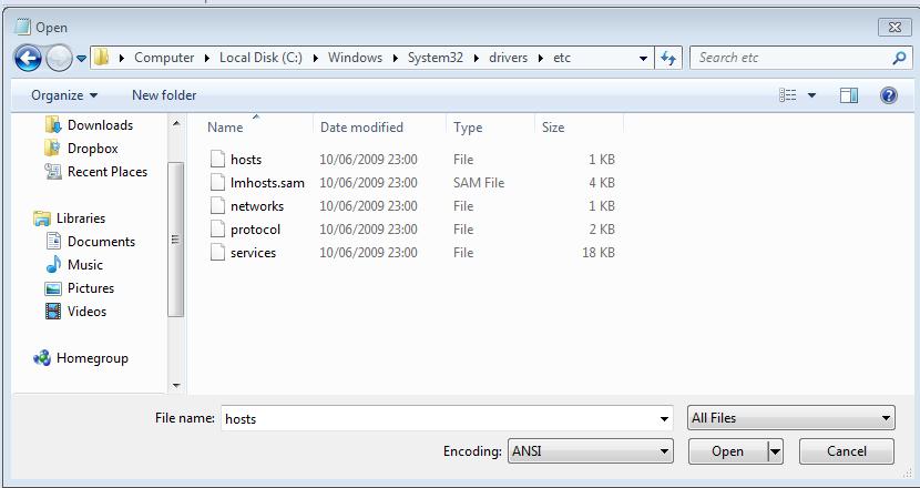 Previsualizar un dominio antes de cambiar los DNS