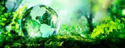 green computing-compromiso-linube