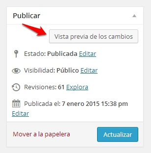 vista previa wordpress error 404
